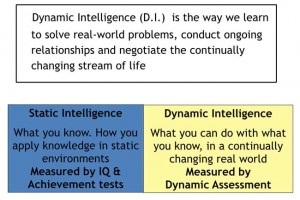 Difference-static-and-dynamic-intelligence
